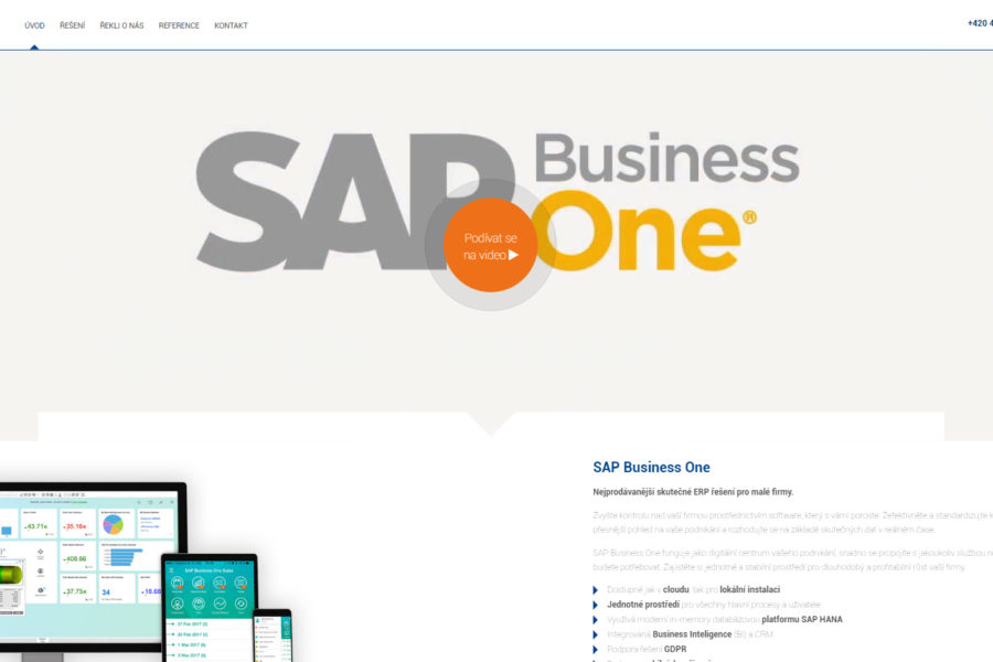 Versino SAP Business One